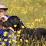 Los beneficios de convivir con un perro